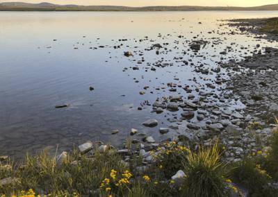 The Loch shore2